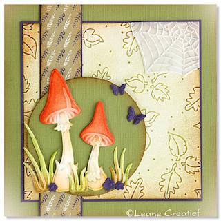 Woodland Mushrooms Card