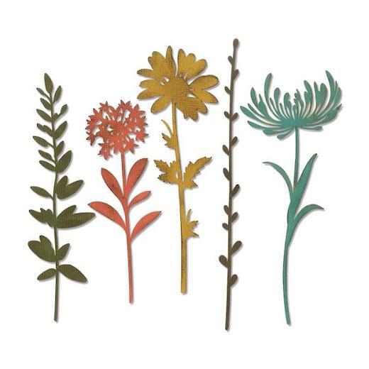 Sizzix Thinlits Dies 7//Pkg By Tim Holtz Wildflowers 630454226314