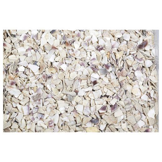 Knorr prandell crushed seashells 333ml bag buddly crafts for Bag of seashells for crafts